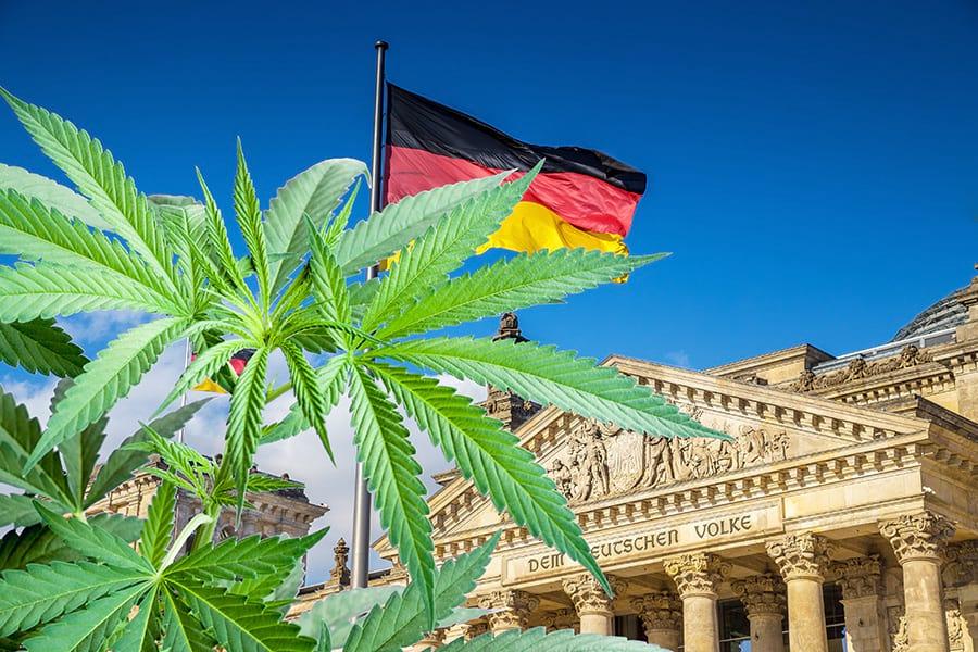 Германия каннабис