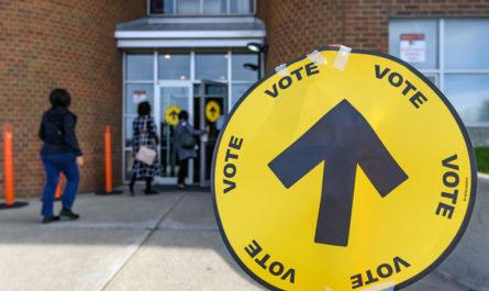 Страны, которые могут провести досрочные выборы в 2020 году