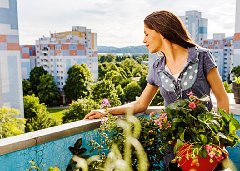 Почему Вена самый лучший для жизни город в мире?