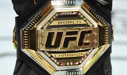 Какая страна воспитала больше всего чемпионов UFC?