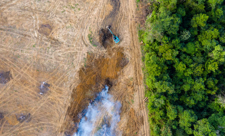 Вид с птичьего полета на вырубку тропического леса.