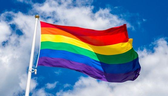 Сент-Винсент и Гренадины ЛГБТ