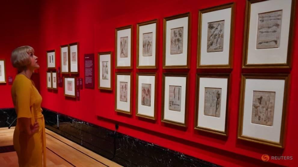 Леонардо: жизнь в живописи, Королевская коллекция Букингемского дворца