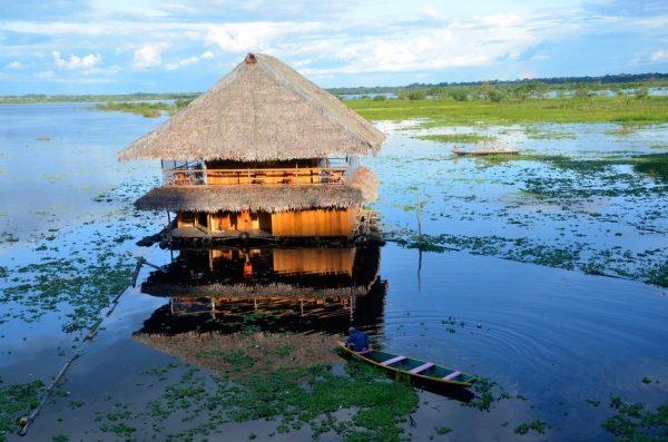 Перуанская Амазония