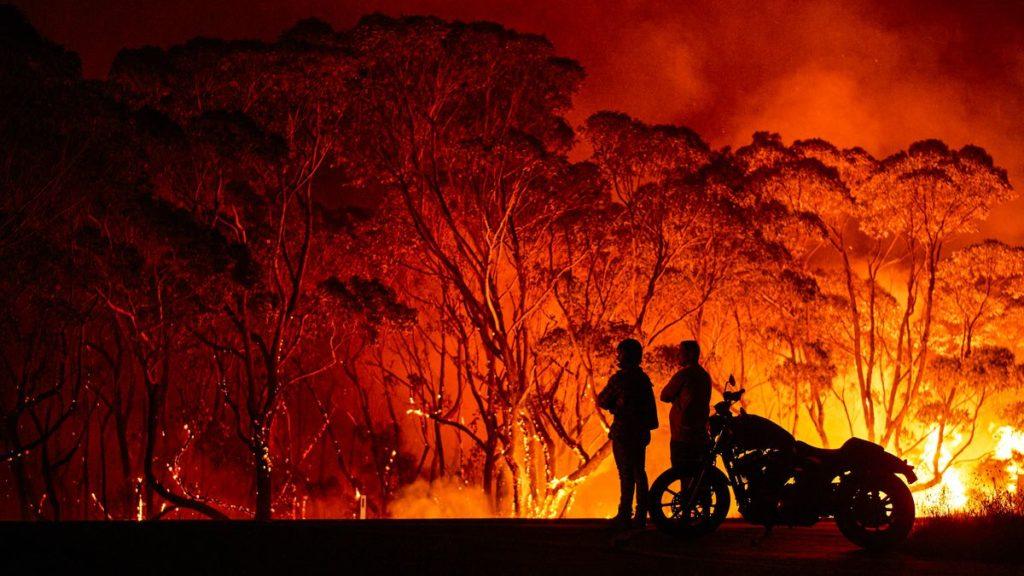 Катастрофа не закончится, когда пожары погаснут