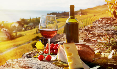 10 ведущих стран-импортеров вина в мире