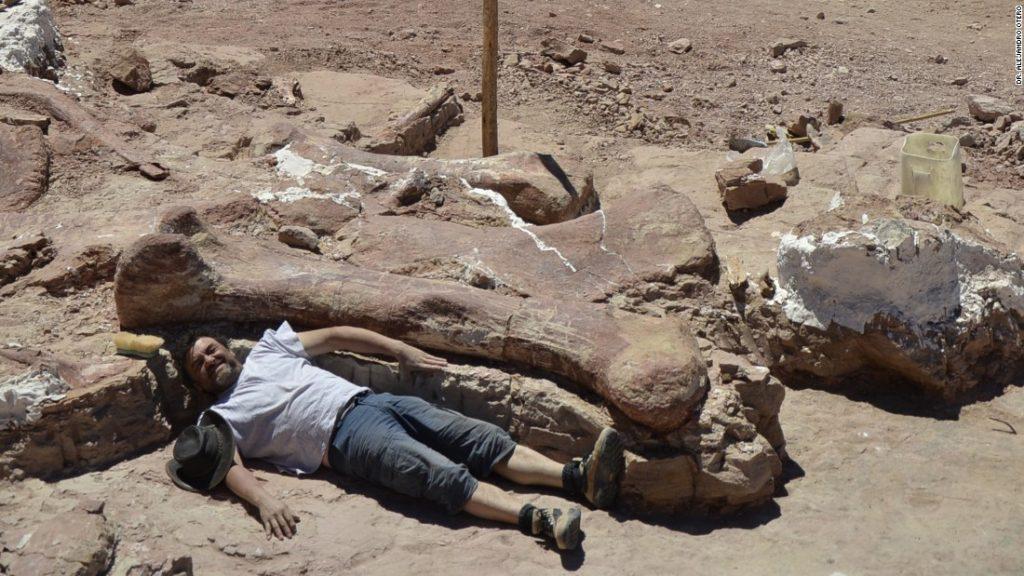 Пустыня Гоби динозавры