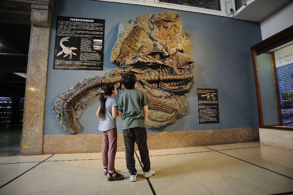 Эль-Калафате динозавры