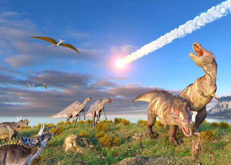 10 Мифов о динозаврах, которые все считают правдой