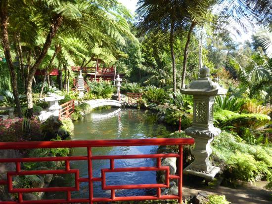 Тропический сад дворца Монте