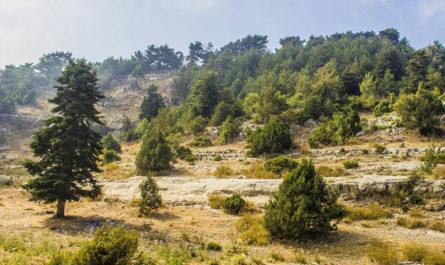 7 недооцененных мест, которые вы должны открыть для себя в Ливане