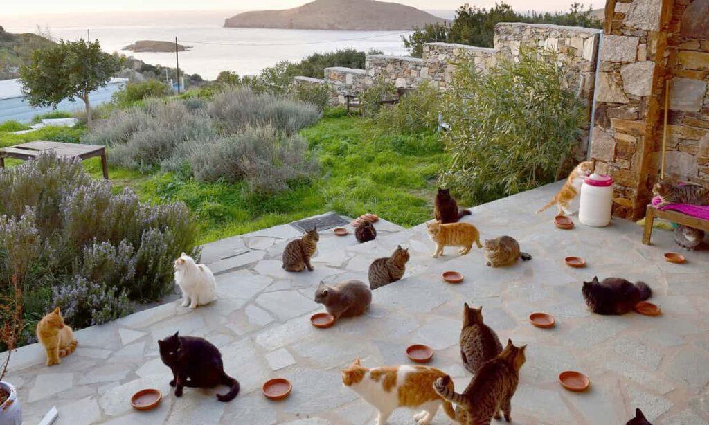 Греческий остров Сирос