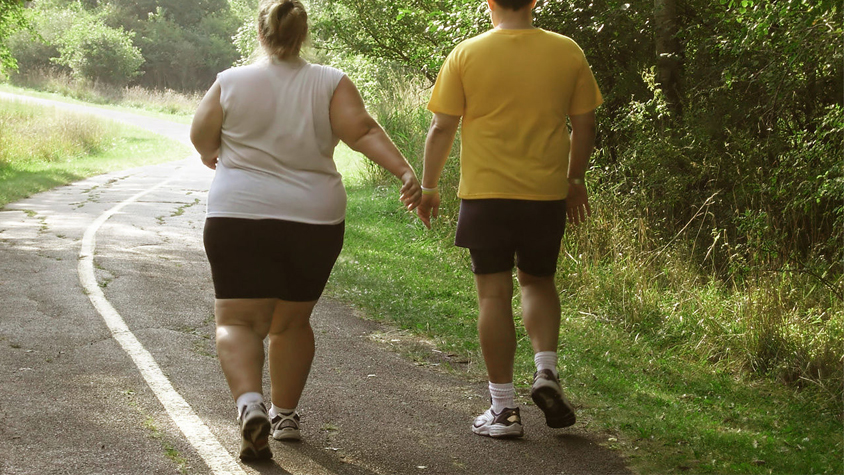 Более 26% венгерского населения страдает ожирением