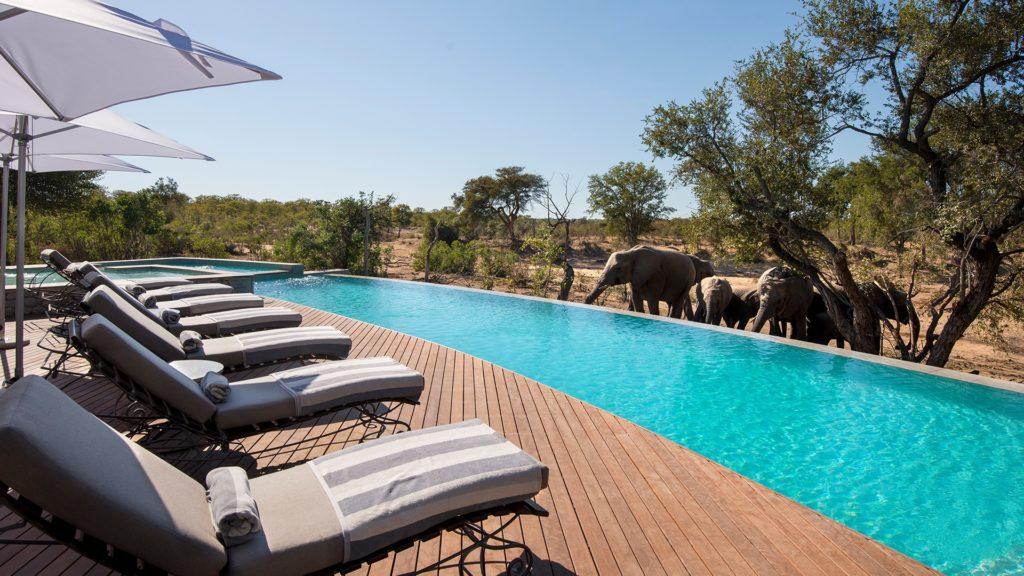 Ngala Safari Lodge, Тимбавати, Южная Африка