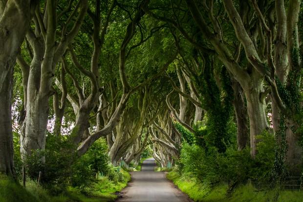 """Вы видели """"Игру престолов""""? Фильм был снят в Северной Ирландии"""