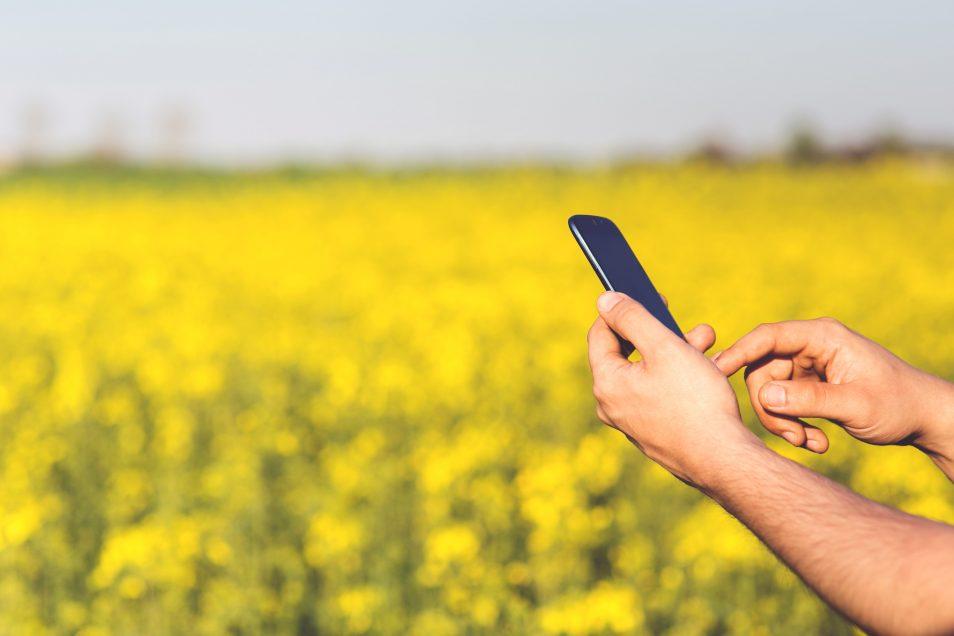 Преобразование сельского хозяйства