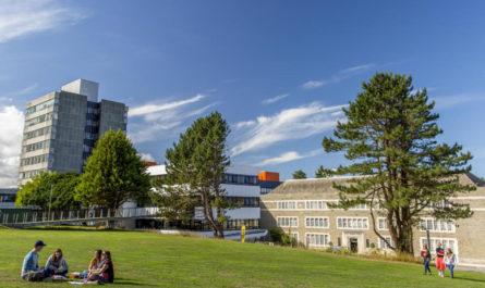 Почему страны должны использовать университеты как новую силу в глобальной дипломатии