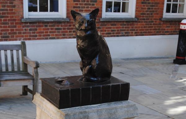 Кошка Ходж, Лондон