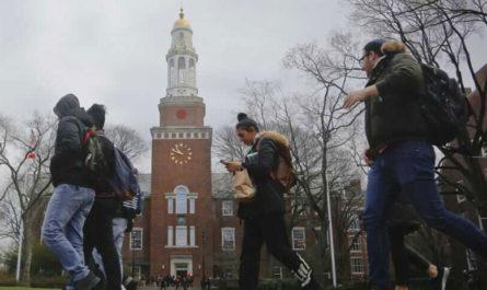 Какие страны предлагают иностранным студентам рабочую визу после окончания учебы?