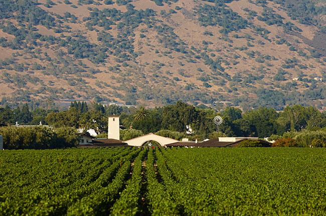 Лучшие виноградники в мире