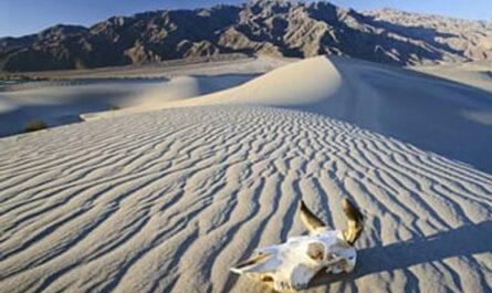 10 самых жарких мест на Земле: от Долины Смерти до Эфиопии