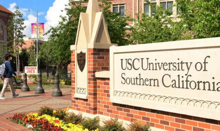 20 лучших университетов США в 2020 году
