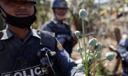 Почему полиция Азии проигрывает в войне с наркотиками?