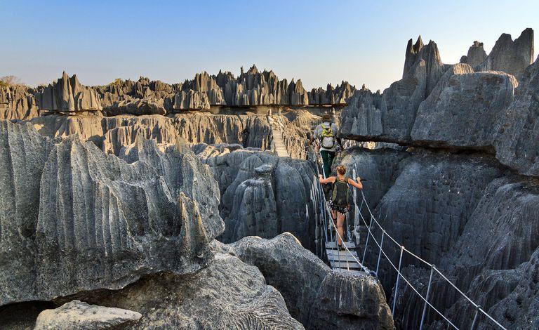 Лес Цинги, Мадагаскар