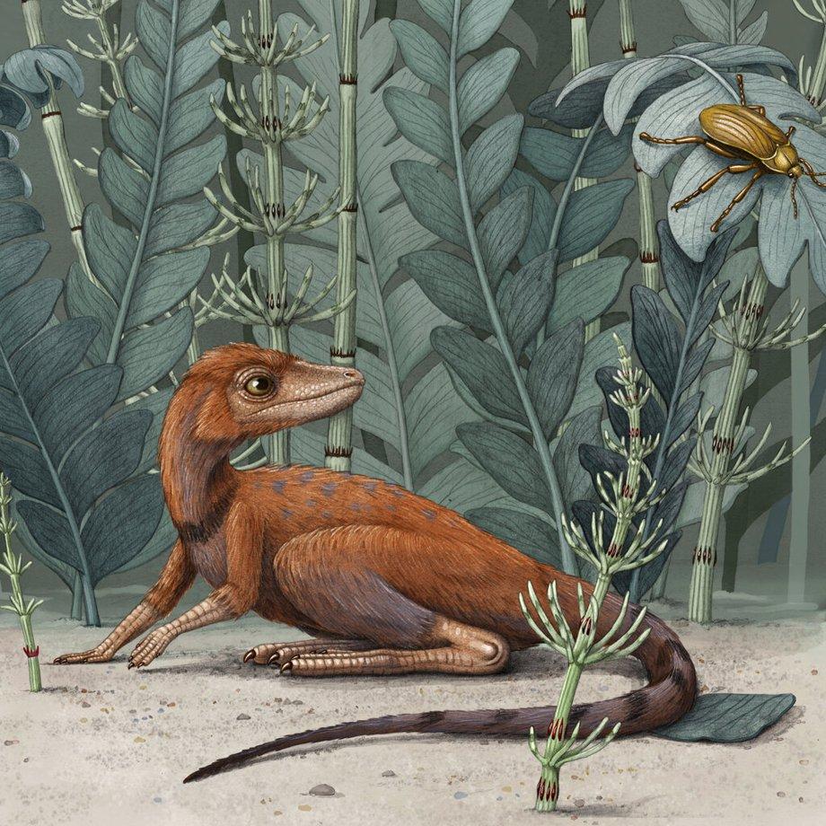 Пушистая рептилия показала, как появились первые динозавры