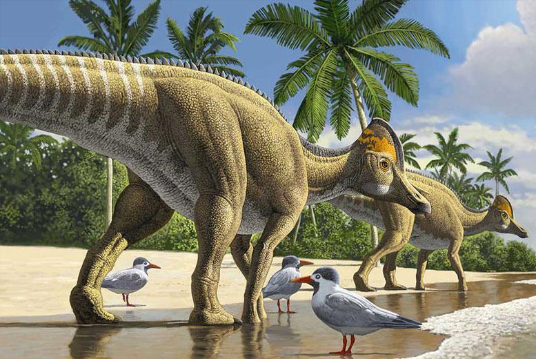 Десять палеонтологических открытий о динозаврах 2020 года