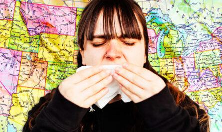 10 худших городов США для аллергиков