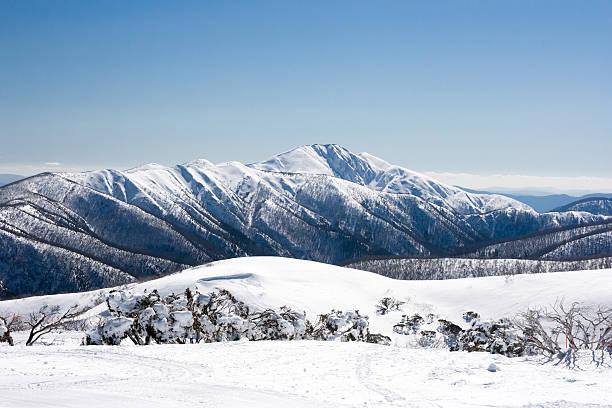 Австралийские Альпы покрыты большим количеством снега, чем швейцарские