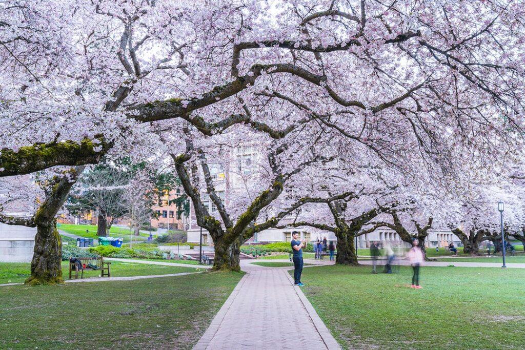 Сиэтл, Вашингтон