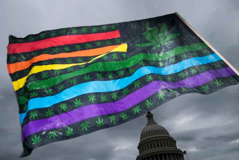 Поддержка легализации марихуаны резко возросла за последние два десятилетия