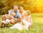 25 лучших городов США для семейного проживания