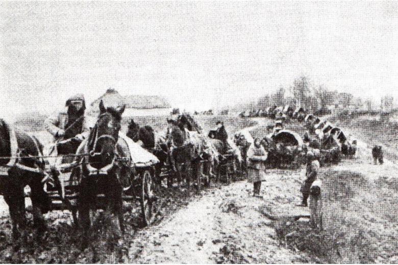 Вторая мировая война привела в движение около 1,4 млн русских немцев