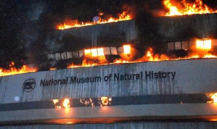 10 достопримечательностей, уничтоженных пожаром