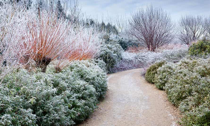 Зимние сады Англси