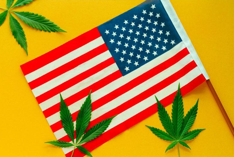 6 фактов об американцах и марихуане