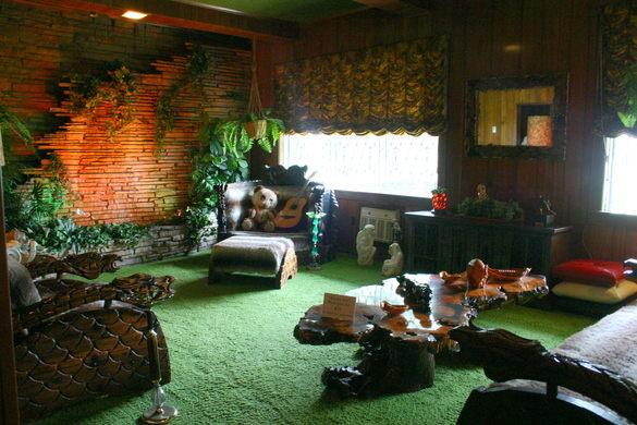 """Комната """"джунгли"""" использоваласть как студия звукозаписи"""