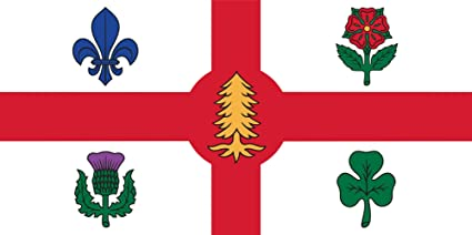 На флаге города изображены пять символов, символизирующие пять народов-основателей