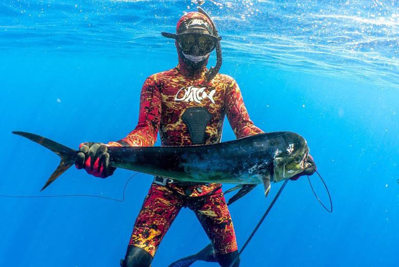 7 самых лучших мест в мире для подводной охоты