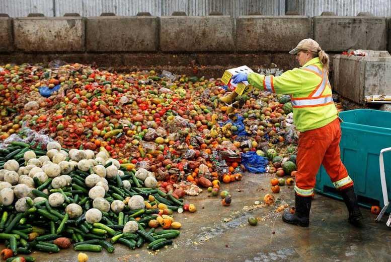 11 фактов о пищевых потерях и отходах