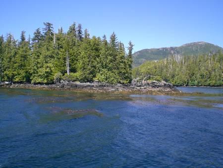 Остров Богоматери, Аляска